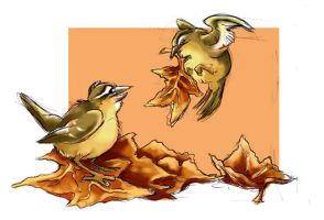 Pair of Wrens by gryen