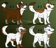 Design of possible Dominant's pups by Str0ngwolf