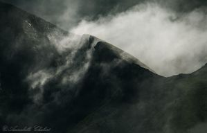 Ridge by Annabelle-Chabert