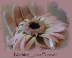Nothing Lasts Forever by IvSeenTwilght