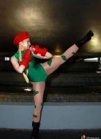 Cammy kick by AlisaKiss