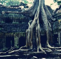 seeping in by marshmallow-pies
