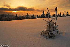 Sunset over the snow by yonashek