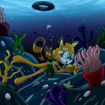 Comm: A raccoon on the reef by UWDR-64