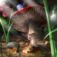 Shroom Faeries by rdsullivan