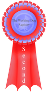 Second Ribbon by Sommer-Studios
