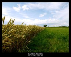 Land of colours by Elithenia