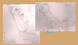 Sketches by Nayirah