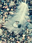 Feather Drop by Charlotte-Stone