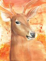 Autumn Deer - Watercolor by Loonaris