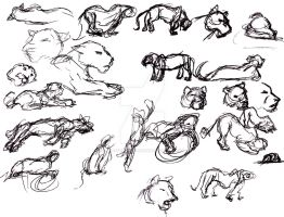 Tiger Gestures by Animator-who-Draws