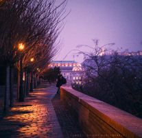 A night in Budapest by sloeb