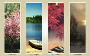 4 Seasons by Crossfire-Design