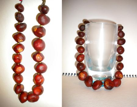Chestnut Necklace by sitres