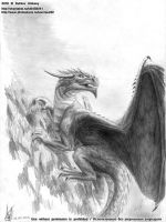 10.02 Dragon on the rock by axe-ql