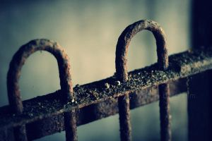 rusted cage by Linlith