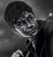 Harry Potter by Griff2065