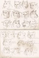 Wolf Expressions by aluinn