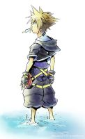 Sora: Kingdom Hearts 2 Color by destinysapprentice