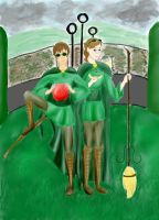 Quidditch time by BeatrixBonnie
