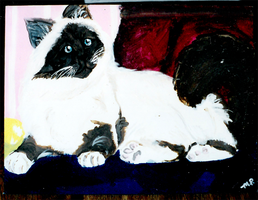 Old Cat Painting 04 by yanagi-san