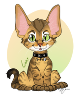 Loki Kitty by Chib-bee
