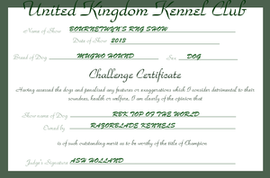 RBK Top of the World - Challenge Certificate #4 by TheChiefofTime
