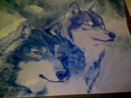blue wolves by anamelo1980