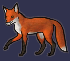 Red Fox by Minneral