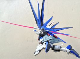 Freedom Gundam (MG) by CLeRu087