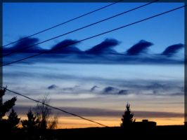 Wave Clouds by Corey-Bird