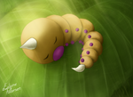 Weedle by deadeps