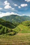 Longshen rice terraces by juhku