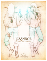 Lizandor 2 Sides by cevier