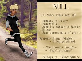 Null Ref (Revamp/More Indepth) by MurcuryBlaze