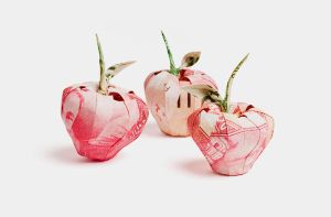 Apples made with foreign currency by orudorumagi11
