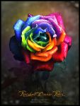 Rainbow Dream Rose by Lilyas