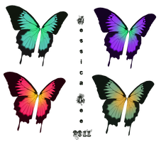 Swallowtail fairy wings stock by daftopia