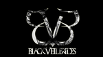Evil BVB #2 by fueledbychemicals