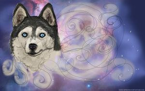 A Husky in Space by faded-impression