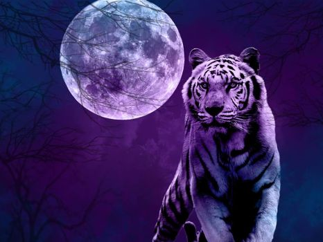 Tiger Moon by CHOWBABY666