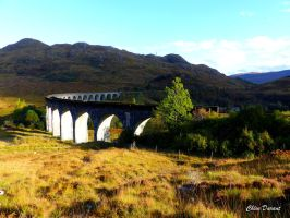 Glenfinnan viaduct by Croownless