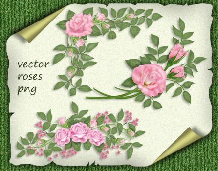 Vector Roses by roula33