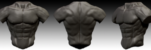 Torso Study - Male by Axoll
