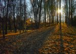 Autumn road... by my-shots