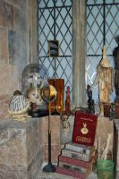 Gilderoy Lockhart Books by Prue126