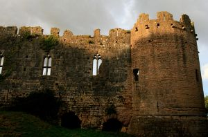 More of Caldicot Castle 5 by Tinap
