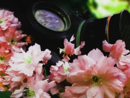 Gasmask in the Blossom 2 by XHanhanX