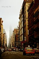 The Streets of New York by idilsalihakuntuz