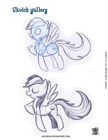 My Little Poney sketchs by celaoxxx